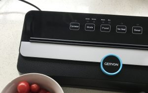 a Vacuum Sealer and a bowl of cherry tomatoes ready to be vacuum sealed in a bag